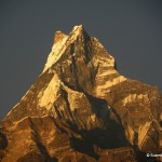 Machapuchare - Beauty of Himalaya in the light of the setting Sun